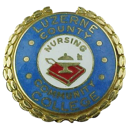 14k Gold Luzerne County Community College Nursing Pin