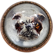 Cute Victorian Essex Glass Bulldog Button
