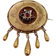 Victorian 14k Gold and Garnet Enamel Pin