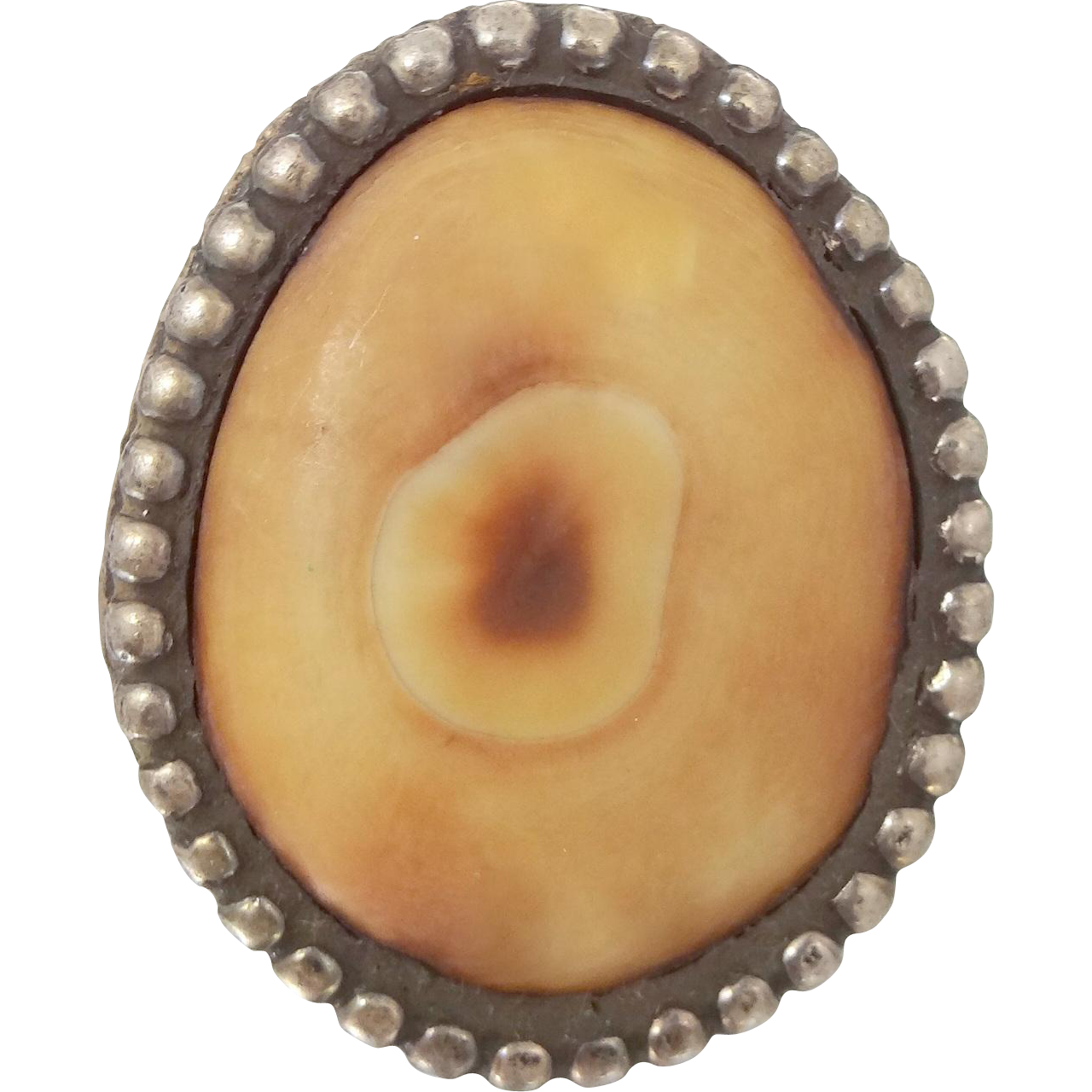 Natural Cream Ox Horn Sterling Silver Ring