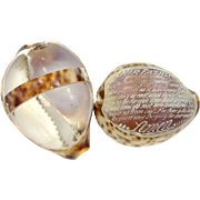 Vintage Cowrie Shell With Carved Lord's Prayer Plus Basket