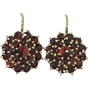 Pretty  900 Silver Vermeil Bohemian Garnets Lever Back Earrings