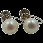 14k White Gold Cultured Plump 7mm Pearls Screw Back Earrings
