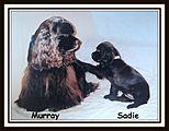 Mur-Sadie's Jewelry