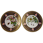 BROWN-WESTHEAD, MOORE c1880s two antique plates rose & lily B5239 aesthetic
