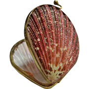 Hinged Sea Shell Trinket Box / Coin Purse