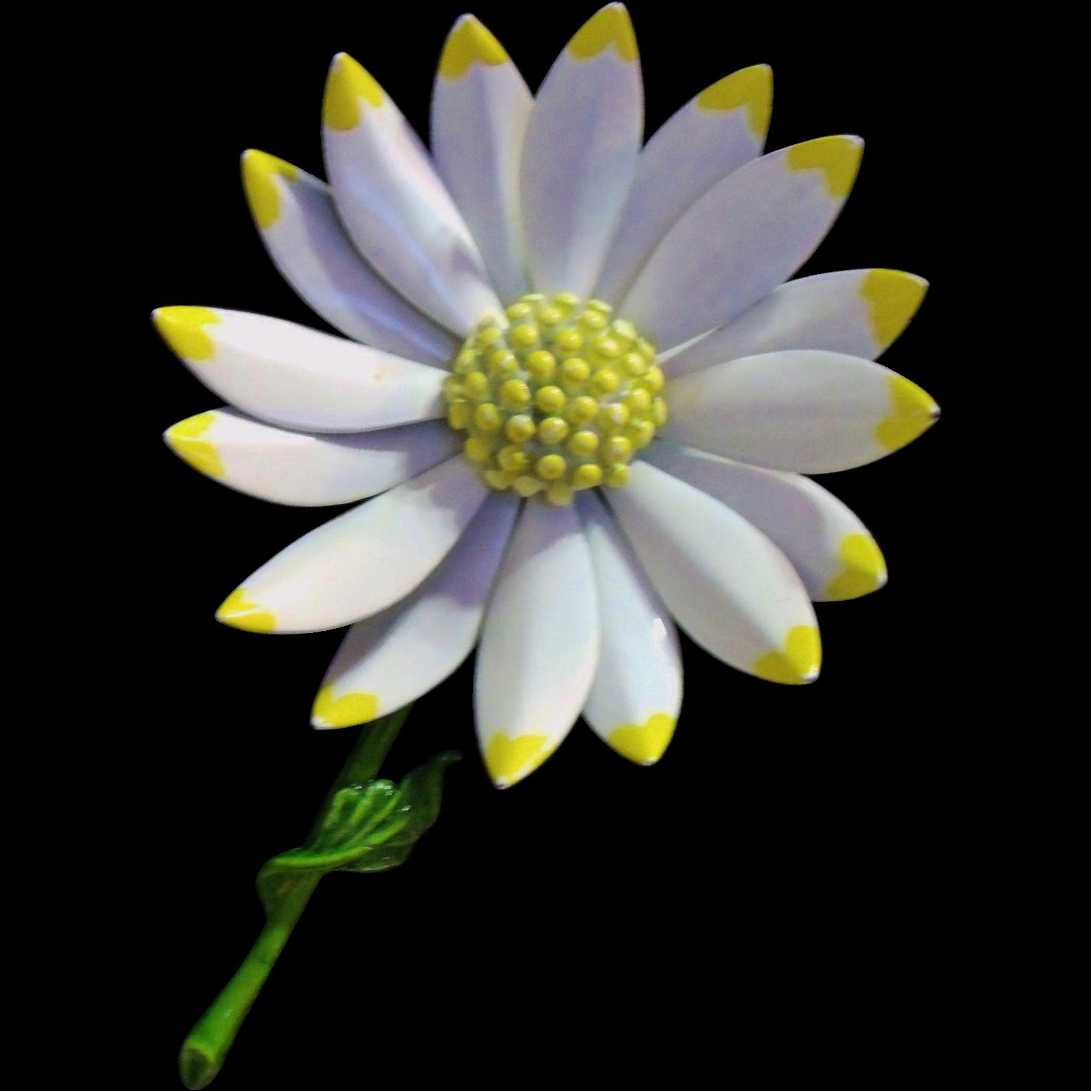 Large & Lovely Enameled Daisy / Flower Pin