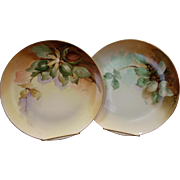2 Ginori Italy Hand Painted & Artist Signed Cabinet / Wall Plates Home Decor Signed R Ginori Fruit Italian