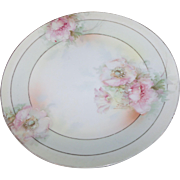 Pre 1932 Prussia Beyer & Bock Hand Painted Plate / Wall Plate Hand Painted Signed Hahn