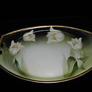 Vintage Hand Painted Porcelain Celery Dish