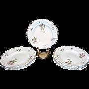 Vintage Rosenthal Moss Rose Gold Rim China  Soup Bowls   Pompadour Pattern