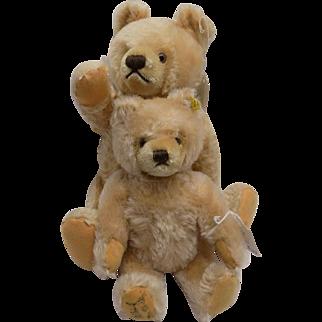 Signed Margaret Steiff Museum Mohair 2 Bears Bear Replica Tag