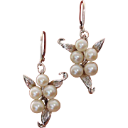 Lovely Japanese Akoya Pearls CONVERTED to Lever Backs Sterling Earrings--Look like Angels !
