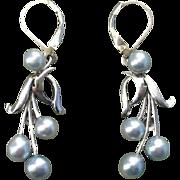 "Blue Akoya 1.8"" CARIBE Pearls & Sterling Vintage Earrings--Converted to Lever Backs !"