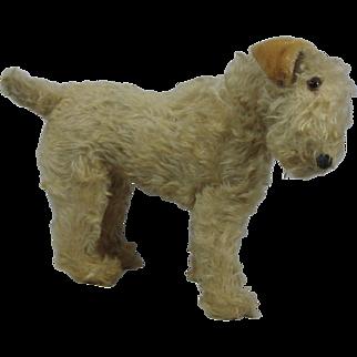 """1935 Steiff Irish Terrier 11"""""""
