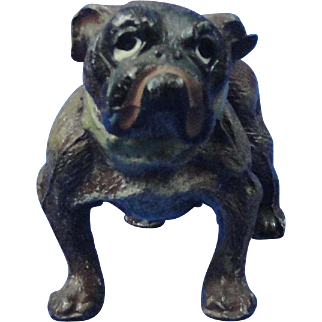 German Cold Painted Spelter Male Bulldog