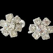 Rhinestone Florets Screw Back Earrings