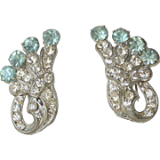 Clear and Aqua Rhinestones Screw Back Earrings
