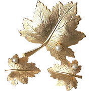 Maple Leaf Faux Pearls Brooch Pin and Clip Earrings Sarah Cov.