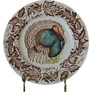 Turkey Dinner Plate Clarice Cliff Royal Staffordshire