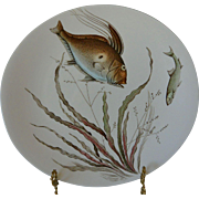 Fish Series No. 4 Oval Dinner Plate Johnson Bros. England