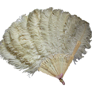Victorian, Edwardian Ladies Ostrich Feather Fan, Formal Attire