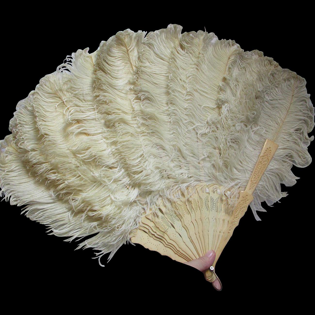 Victorian, Edwardian Ladies Ostrich Feather Fan, Formal Attire