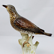Early 20th c. Meissen KPM Porcelain Bird Figurine