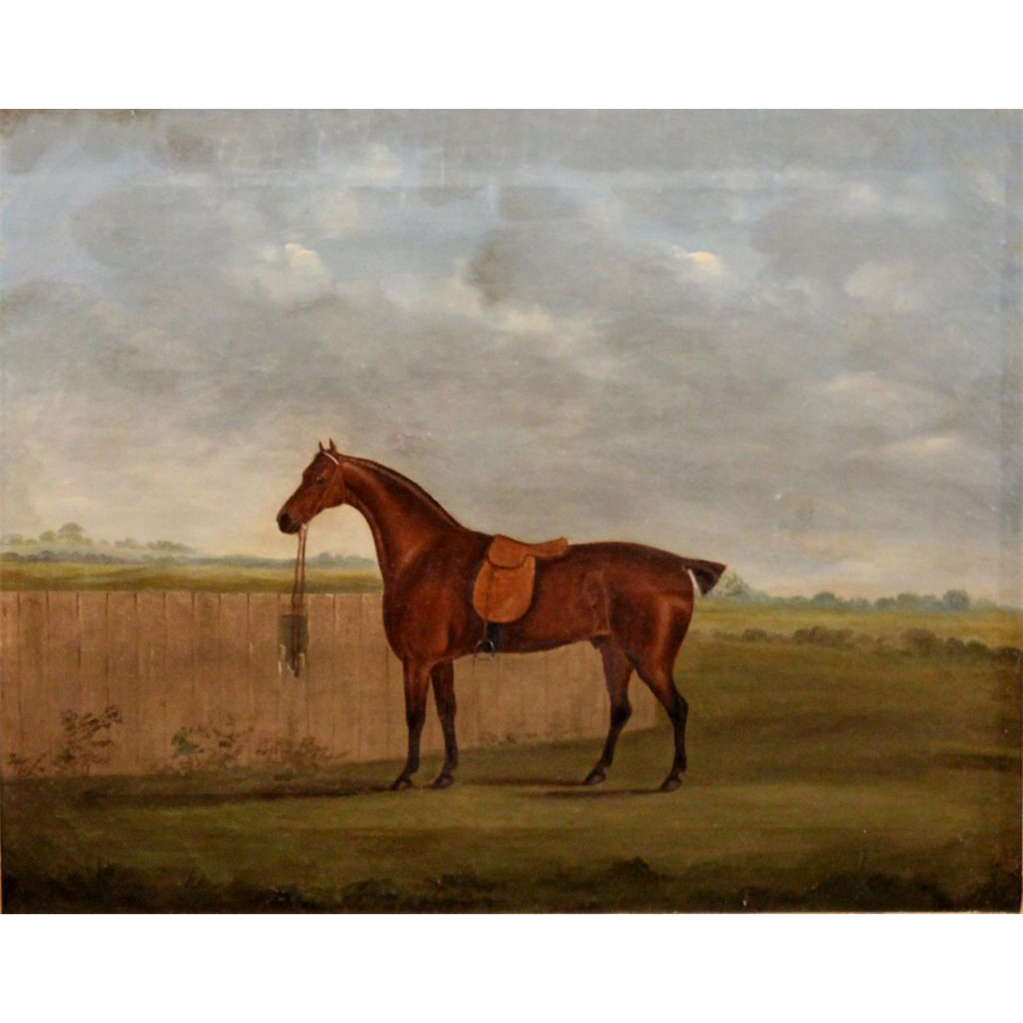 19th c British School Oil Painting Portrait of a Horse