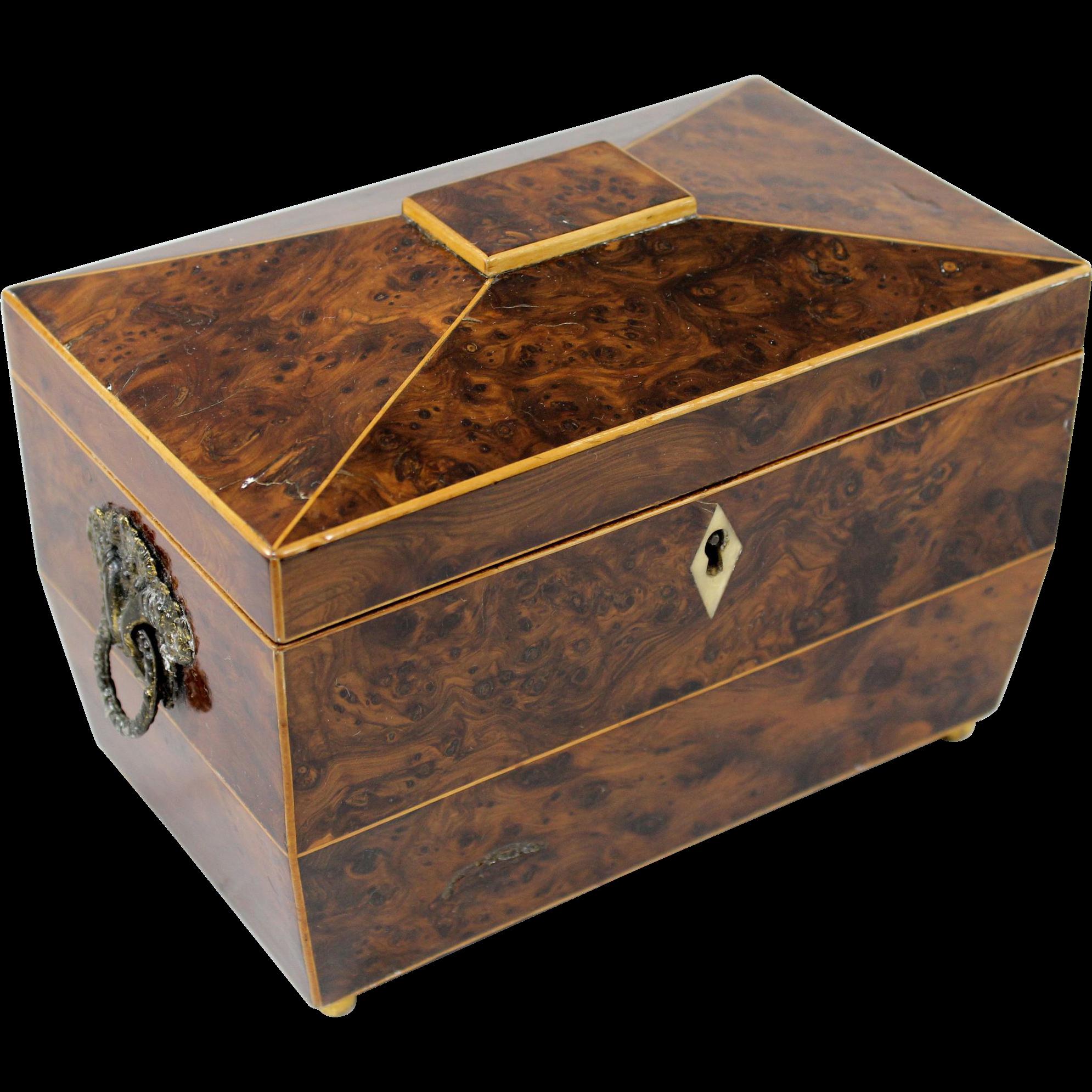 Early 19th c English Burlwood Casket Form Tea Caddy