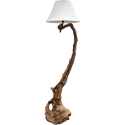 Tall Floor Lamp Made from Root and Burl