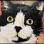 Aline Lotter Oil Painting Portrait of a Cat - Milo