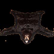 20th Century American or Canadian Black Bear Skin Rug