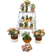 Doll House Plant Cart