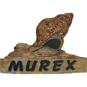 Vintage Painted Wooden Murex Sea Shell Sign