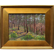 Walk Through Wellfleet-Framed 9 X 12 Oil Painting by Artist L. Warner-Springtime Woods
