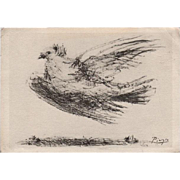 Pablo Picasso Signed French 'Dove of Peace' Postcard 1957 Lifetime Issue.