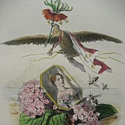 Original Grandville Signed French Engraving 'Hortensia Couronne Imperiale' 1867 for Les Fleurs Animees.