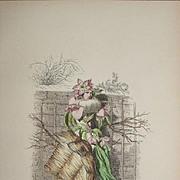 Original Grandville Signed French  Engraving 'Fleur de Pecher' by Grandville 1852.