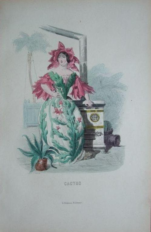 SALE: Original Signed Grandville French Engraving 'Cactus' from Les Fleurs Animees..1852.