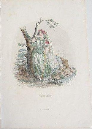 Grandville Victorian Engraving 'Verveine' 1867 from Les Fleurs Animees.