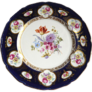 Royal Doulton Cabinet Plate: Cobalt, Gilding, Floral Decoration