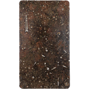 Moroccan Fossil Stone Marble Slab