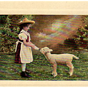 Old, Photograph Postcard - Little Girl Feeding a Lamb