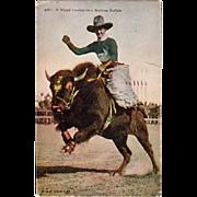 Old, U.P.R.R. Co. Photo Postcard - Cowboy on Buffalo