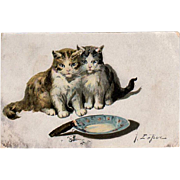 Vintage Postcard with Kittens - Jules LeRoy