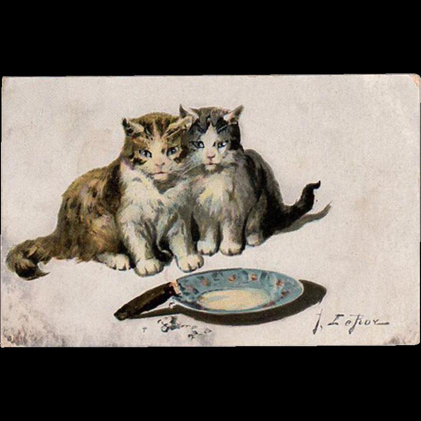 Vintage Postcard with Kittens - Jules LeRoy