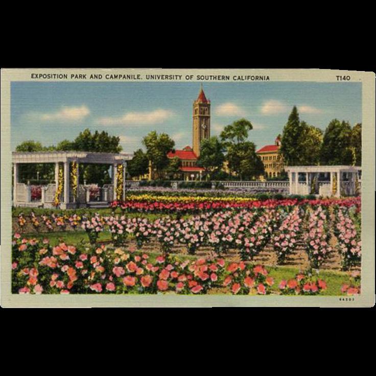 Vintage, Souvenir Postcard of Exposition Park, U.S.C.
