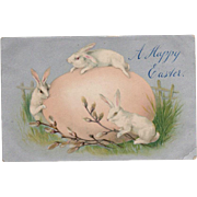 Vintage, Easter Postcard - Large Egg & 3 Bunnies