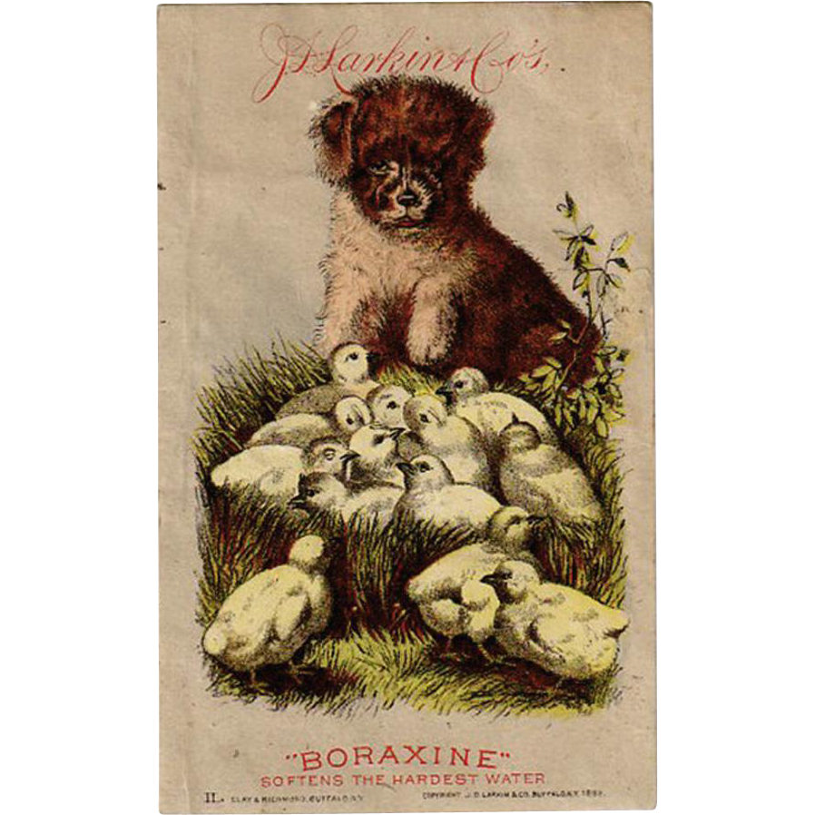 Vintage Trade Card - Larkin & Company - Boraxine - Cute Graphics